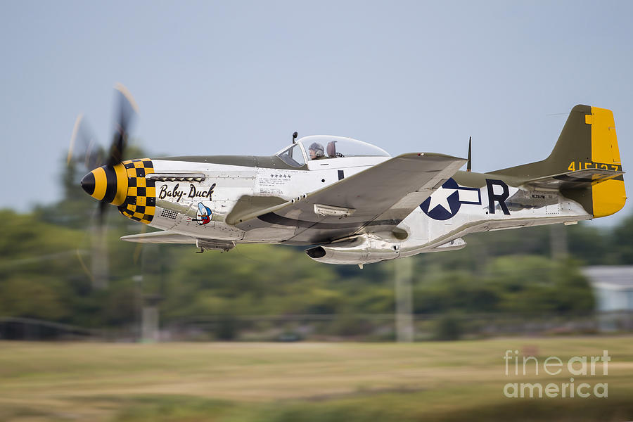 A P-51 Mustang Takes Off From Waukegan Photograph