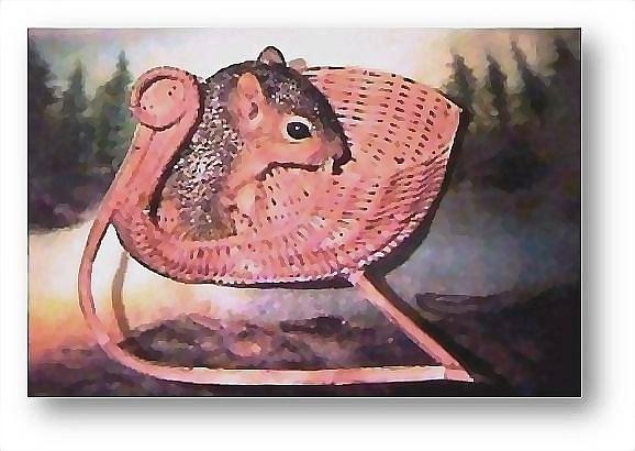 Squirrels Mixed Media - All Aboard by Brenda Garacci