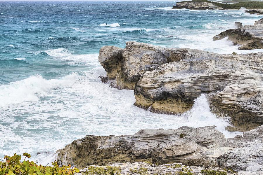 Cliff Photograph - Atlantic Coastline In Bahamas by Pier Giorgio Mariani