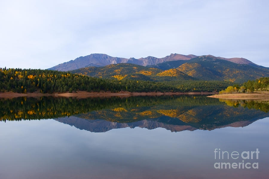 Autumn Aspen At Crystal Creek Reservoir Pikes Peak Photograph
