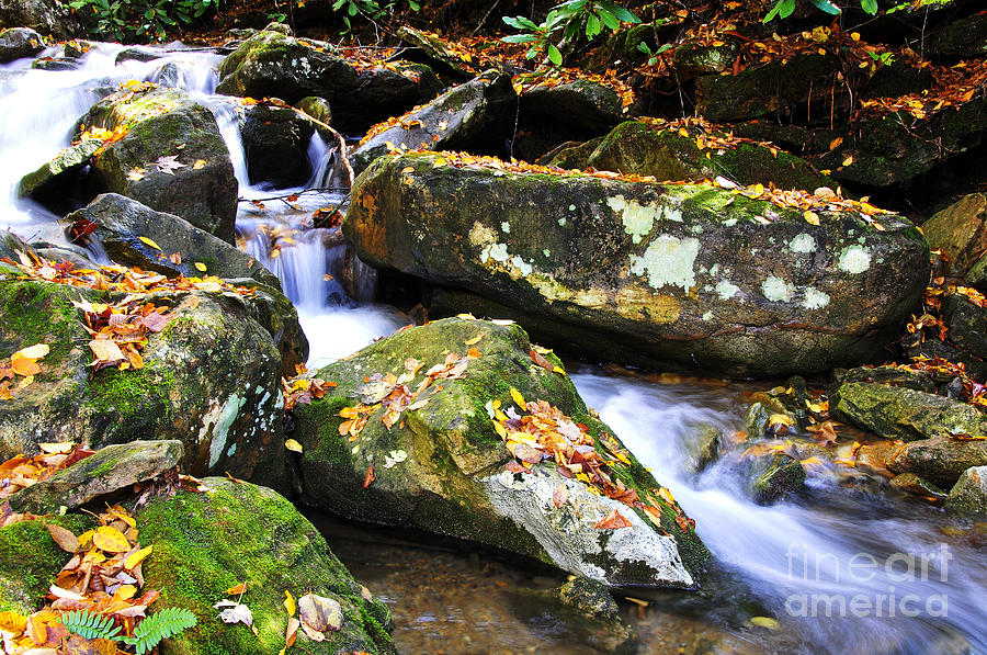 Fall Color Photograph - Autumn Mountain Stream by Thomas R Fletcher