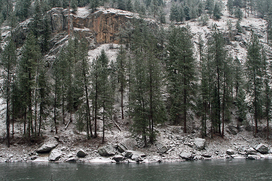 Clearwater River Photograph - Clearwater River by Frank Morales Jr