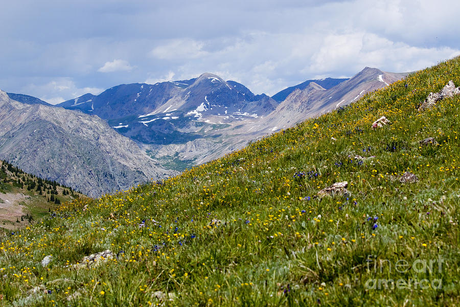 Cottonwood Pass And The Colorado Continental Divide Photograph