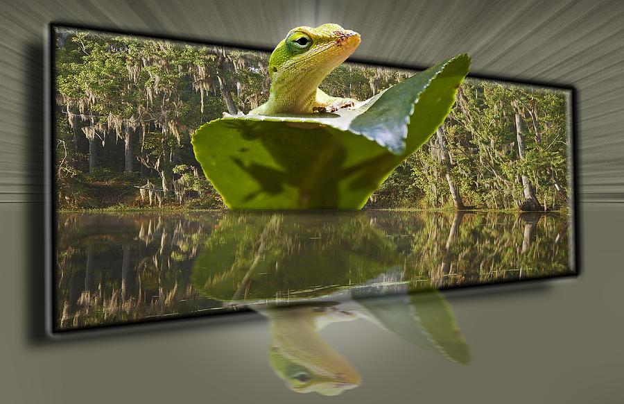 3-d Reflecting Lizard Photograph by Michael Whitaker