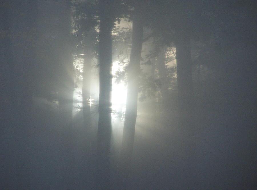 Sunrise Photograph - Daybreak Of Creation by Lila Mattison