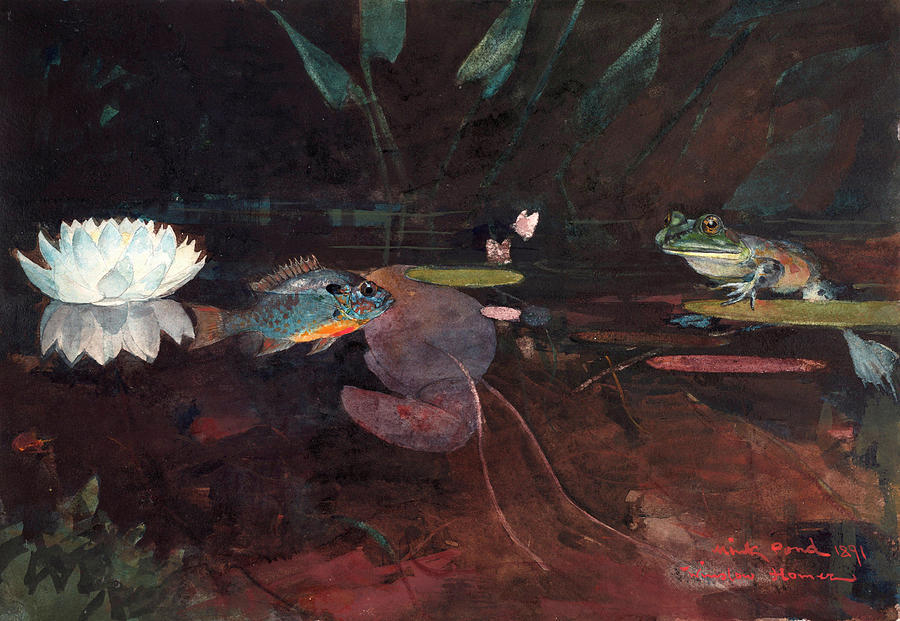 Mink Painting - Mink Pond by Winslow Homer