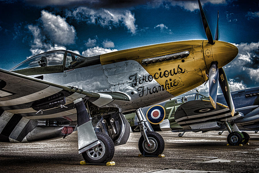 Plane Photograph - Mustang by Martin Newman