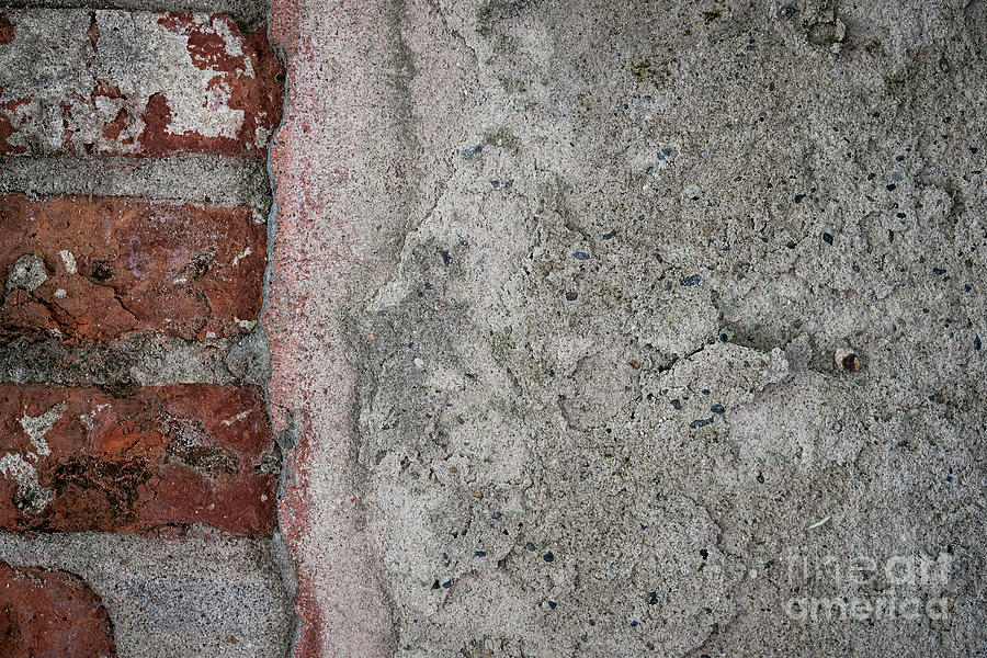 Wall Photograph - Old Wall Fragment 3 by Elena Elisseeva