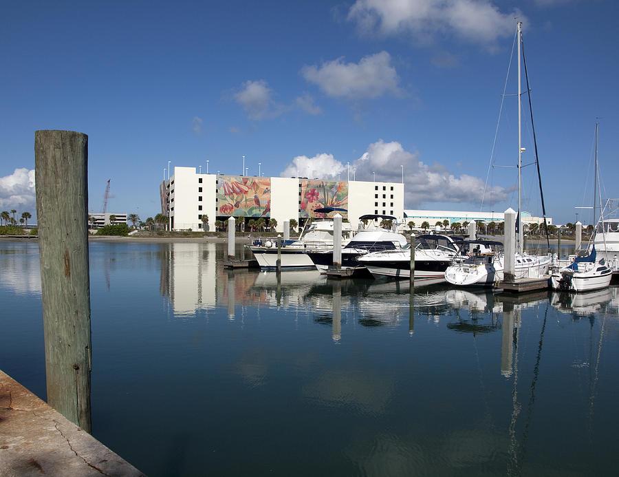 Florida Photograph - Port Canaveral Florida Usa by Allan  Hughes