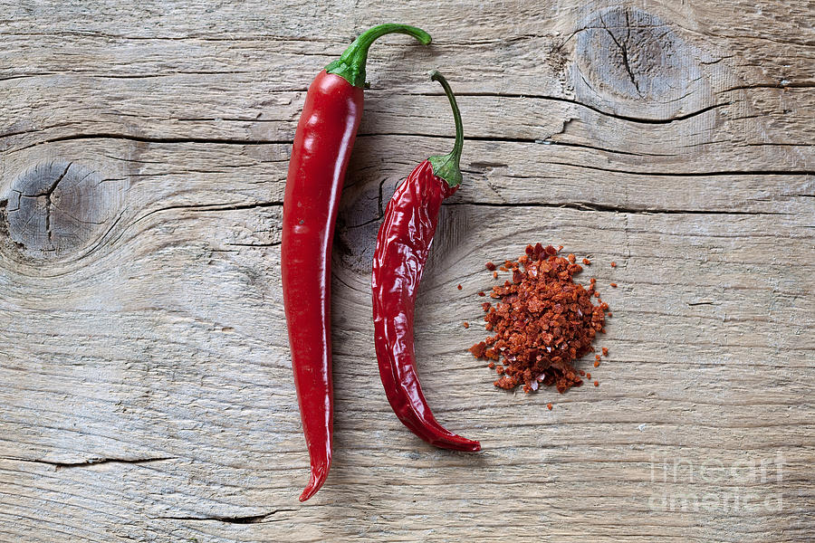 Chili Photograph - Red Chili Pepper by Nailia Schwarz