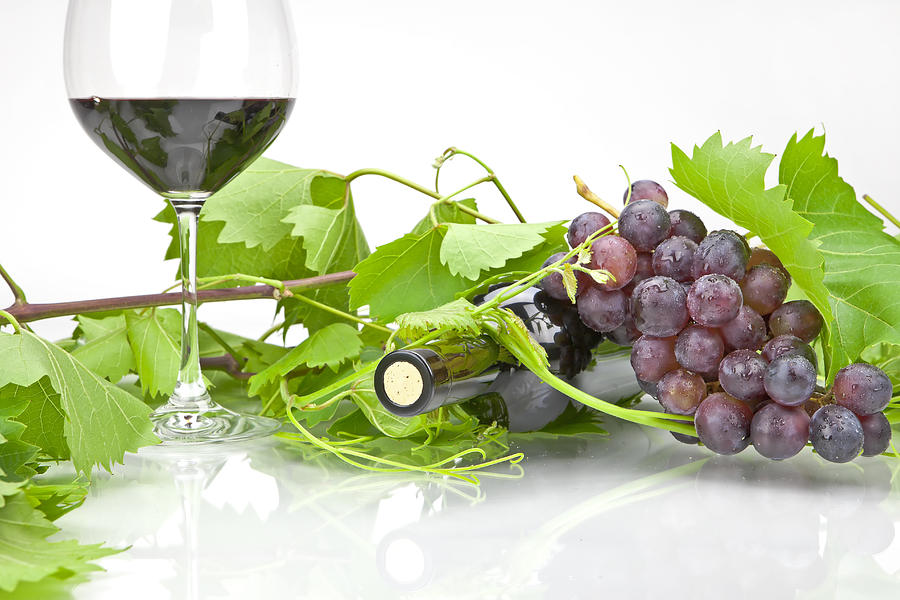 Wine Photograph - Red Wine by Joana Kruse