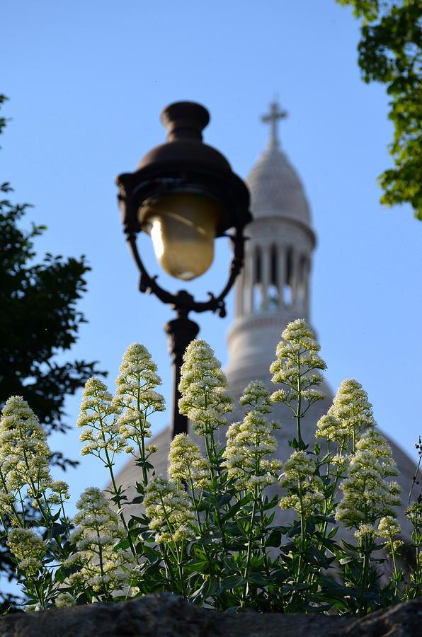Sacre Coeur Photograph - Sacre Coeur  by Riad Belhimer