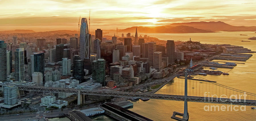 Financial District Photograph - San Francisco Financial District Skyline by David Oppenheimer