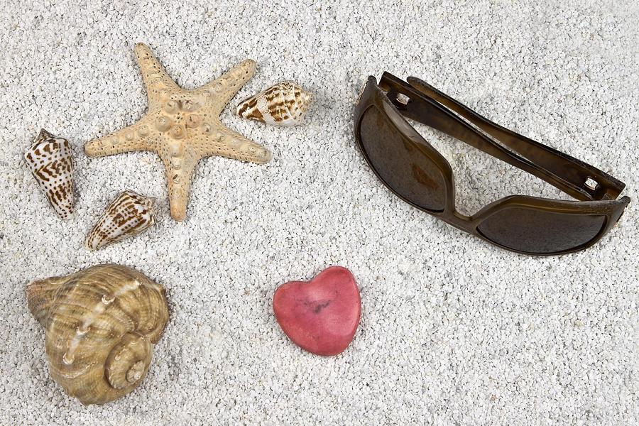 Starfish Photograph - Seastar And Shells by Joana Kruse