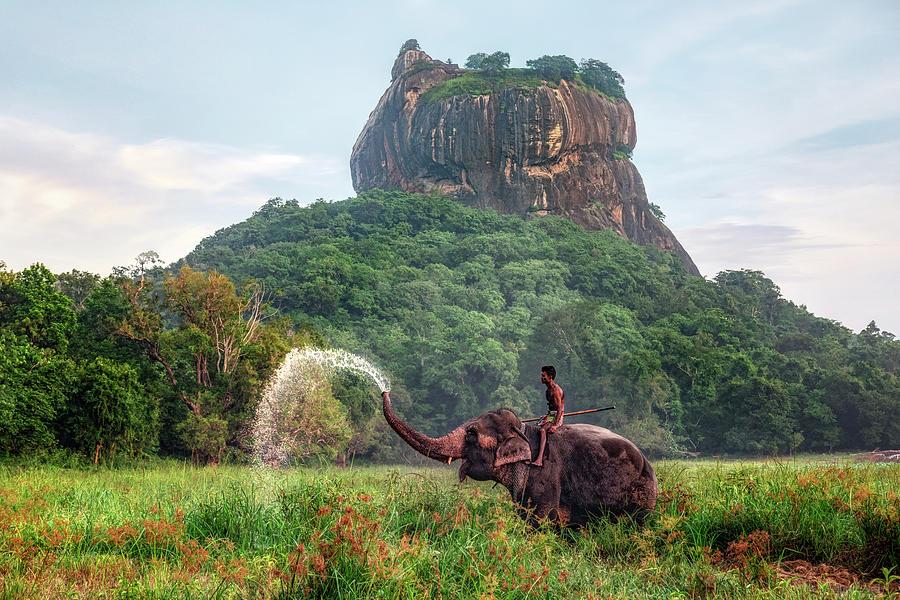 Sigiriya Sri Lanka Photograph By Joana Kruse