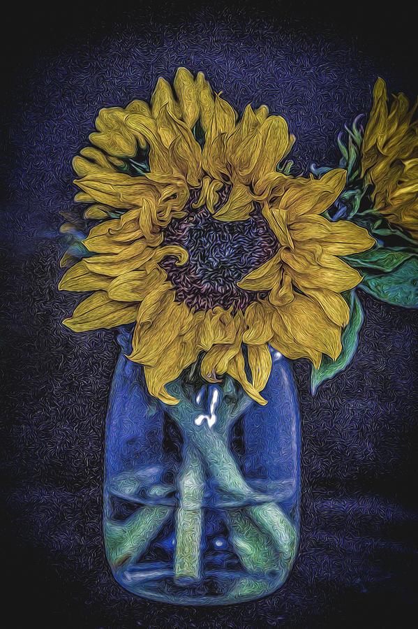 Sunflower Photograph - Sunflower by Angela Aird
