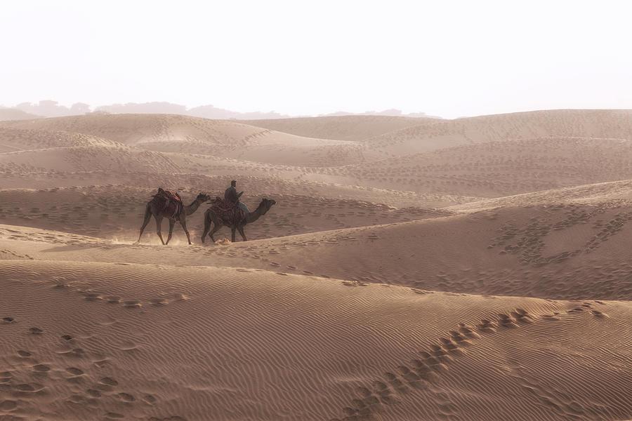 Thar Desert Photograph - Thar Desert - India by Joana Kruse