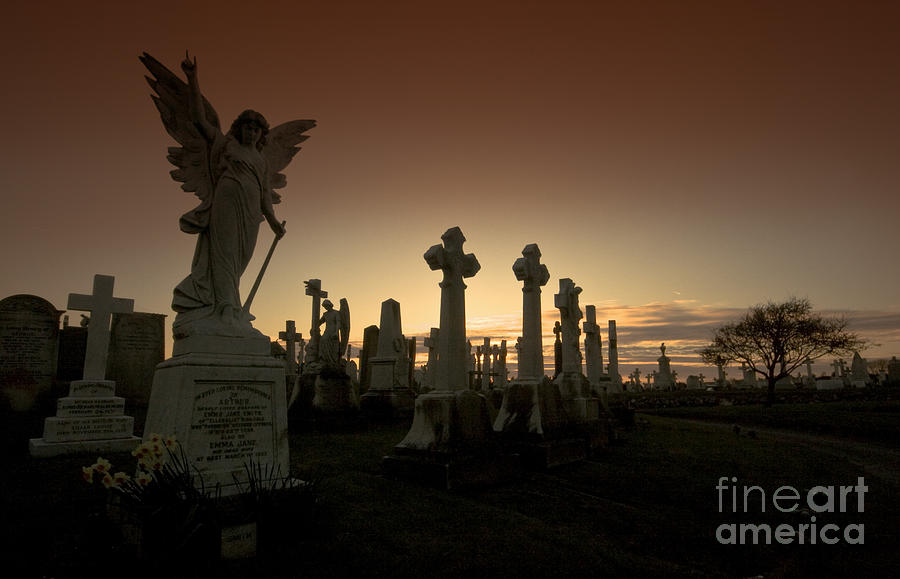 Angel Photograph - The Graveyard by Angel  Tarantella