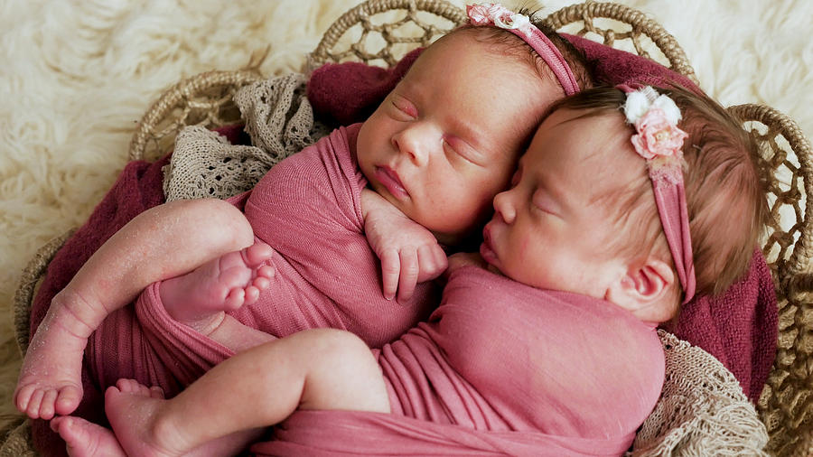 twins sisters newborn in the winding and in a basket photograph by