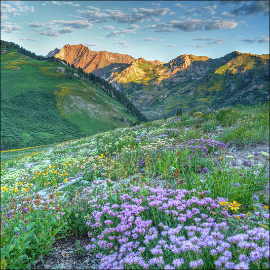 Wasatch Mouintains Utah Photograph