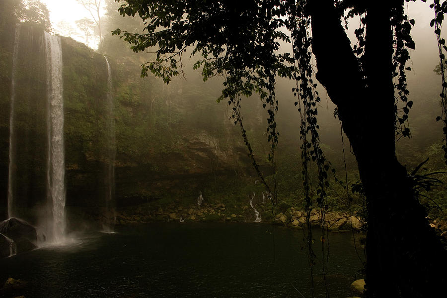 Ecotourism Photograph - Waterfall  by Chico Sanchez