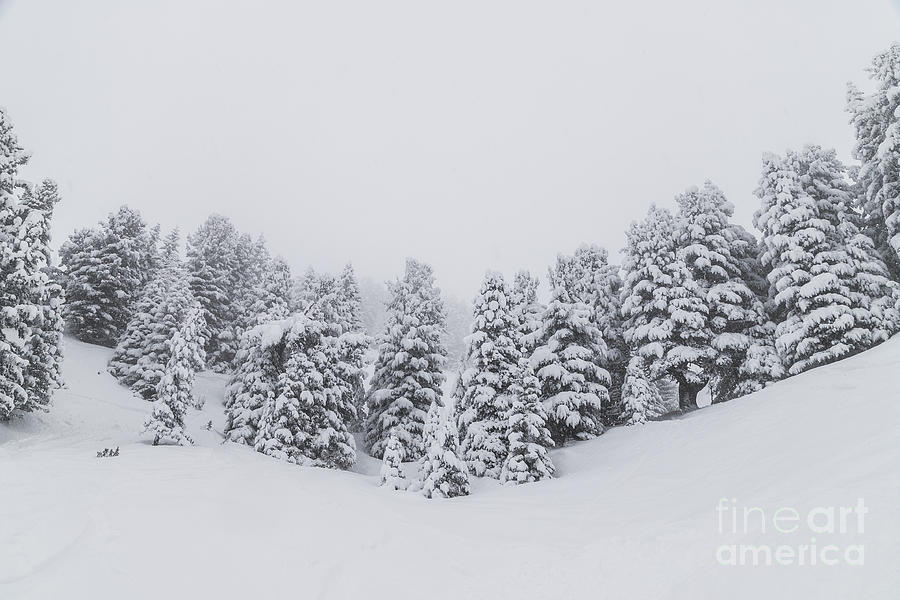 Horizontal Photograph - Winter Landscapes by Travel and Destinations - By Mike Clegg