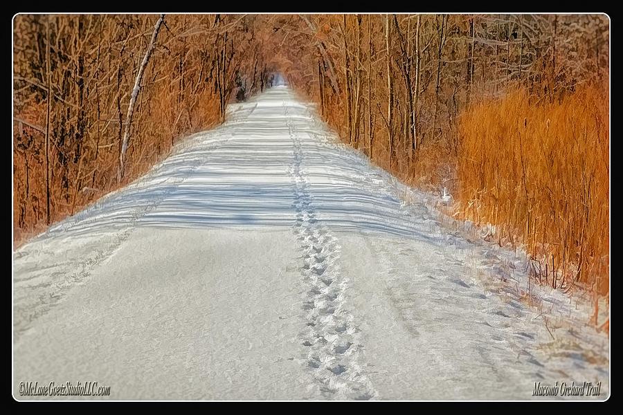 Winter Photograph - Winter On Macomb Orchard Trail by LeeAnn McLaneGoetz McLaneGoetzStudioLLCcom