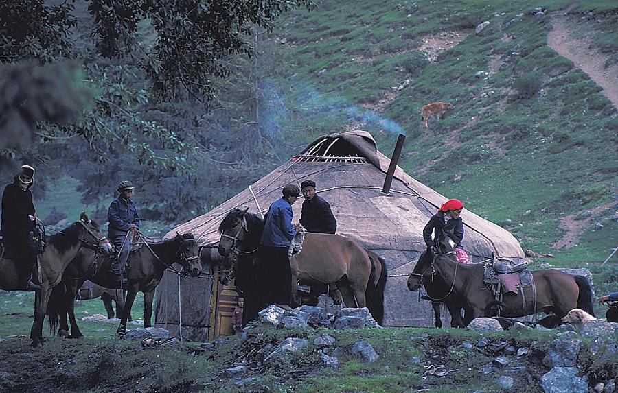 Yurt In Mongolia Photograph