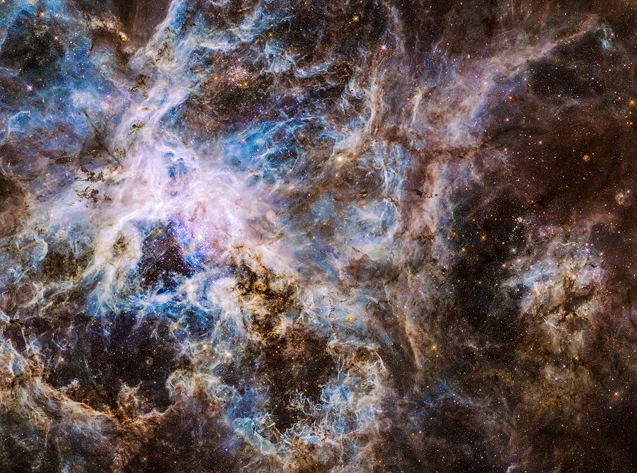 Tarantula Nebula Photograph - 30 Doradus - Tarantula Nebula 8  by Jennifer Rondinelli Reilly - Fine Art Photography