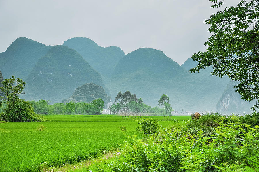 Landscape Photograph - The Beautiful Karst Rural Scenery by Carl Ning
