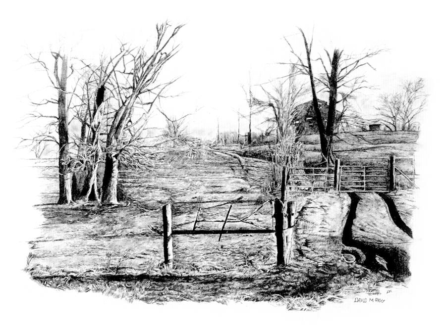 rutted road drawing by david m pigg