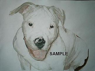 American Staffordshire Bull Terrier Painting by Billie Riholm