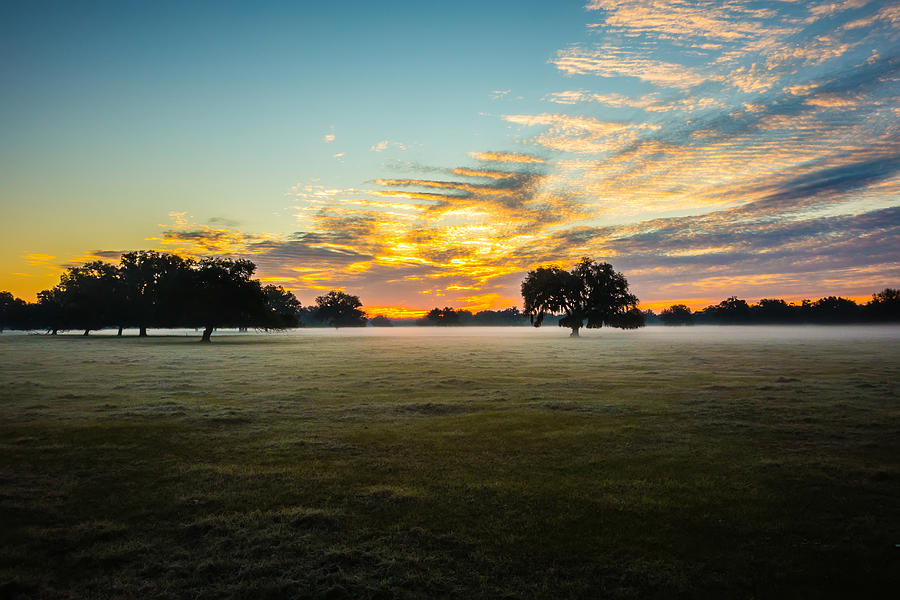 Abstract Sunrise Landscape On The Farm In Florida Photograph