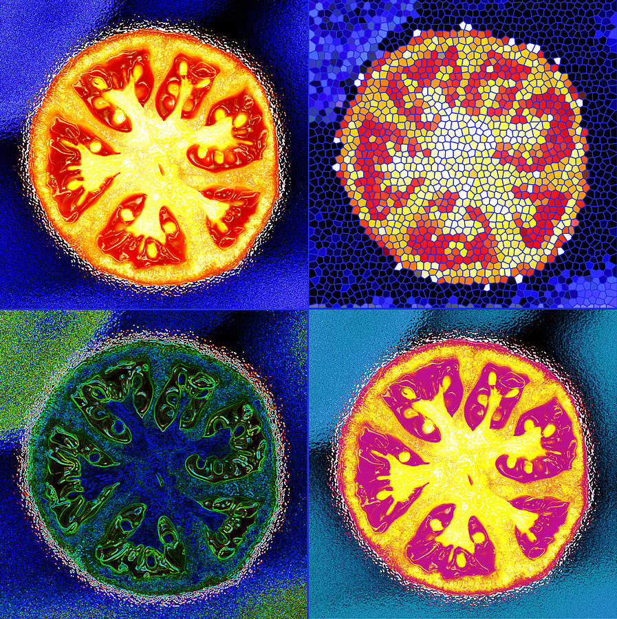 4 Abstract Tomatoes Photograph