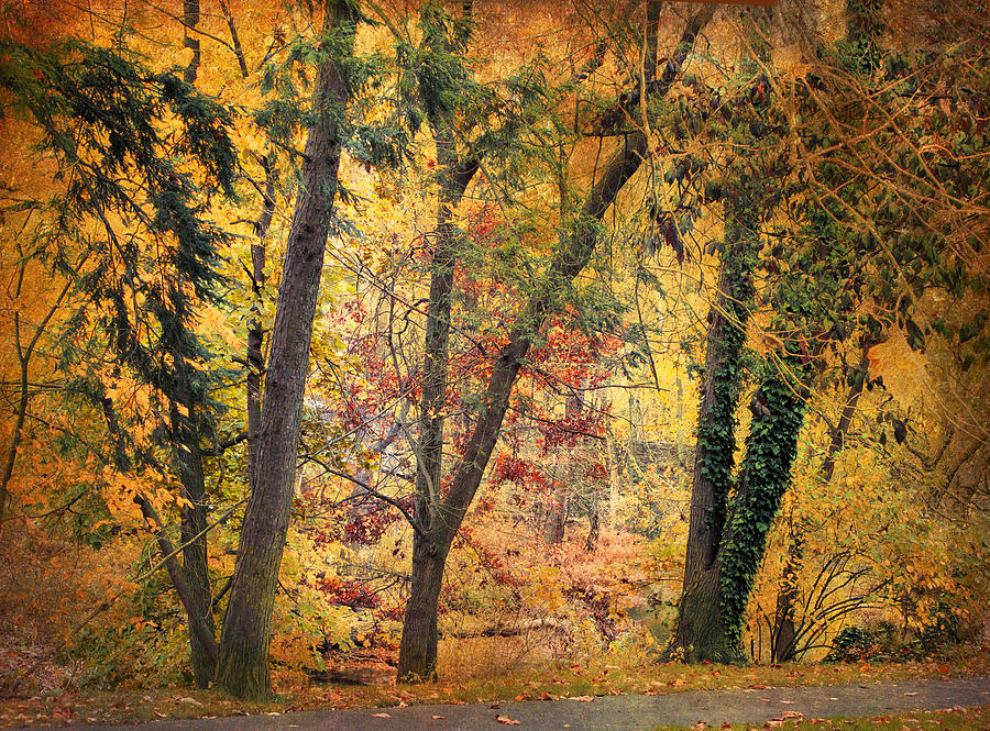 Autumn Photograph - Autumn Canvas by Jessica Jenney