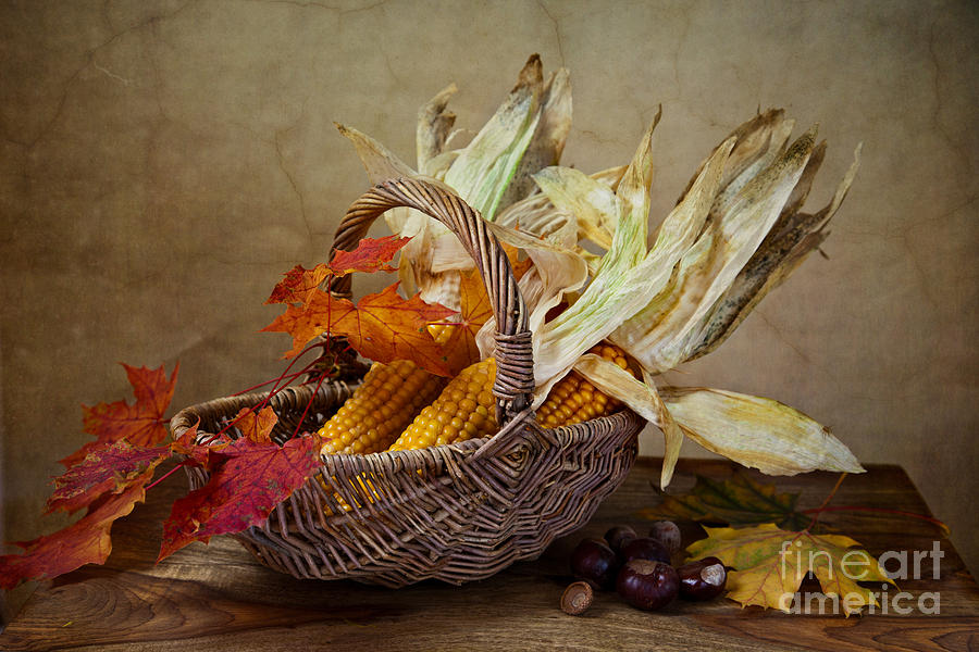 Still Photograph - Autumn by Nailia Schwarz