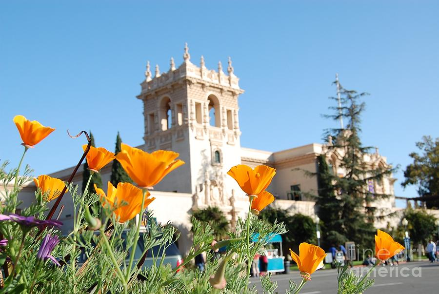 Balboa Park San Diego Photograph By Jasna Gopic