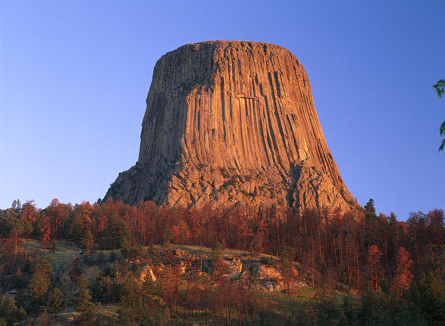 Devils Tower National Monument Showing Photograph By Tim