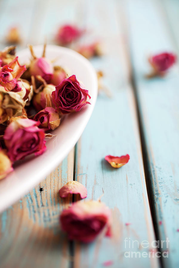 Heart Photograph - Dried Roses by Kati Finell