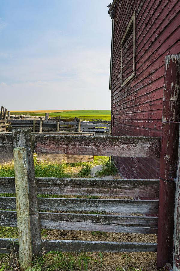 Homestead Photograph