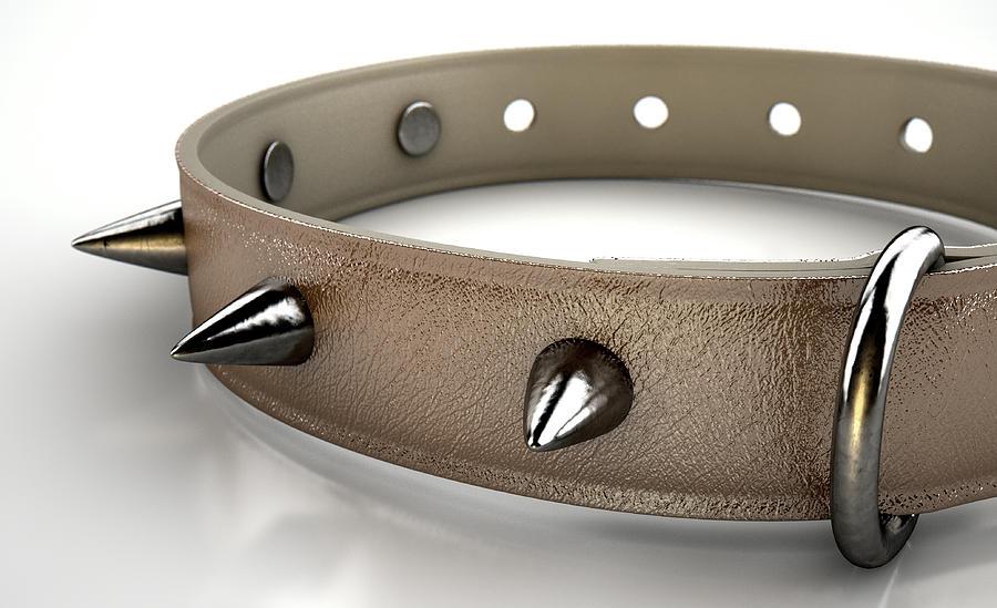 Collar Digital Art - Leather Studded Collar by Allan Swart