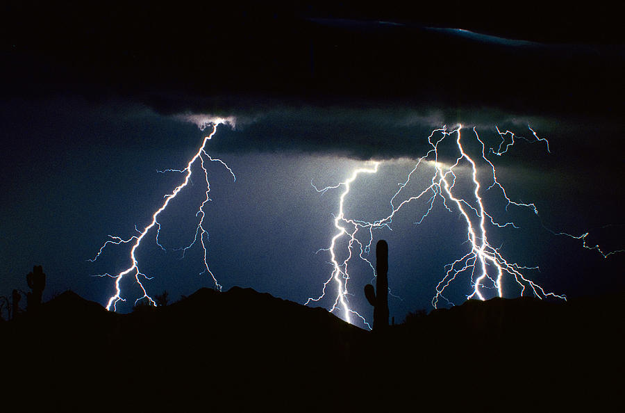 Landscape Photograph - 4 Lightning Bolts Fine Art Photography Print by James BO  Insogna