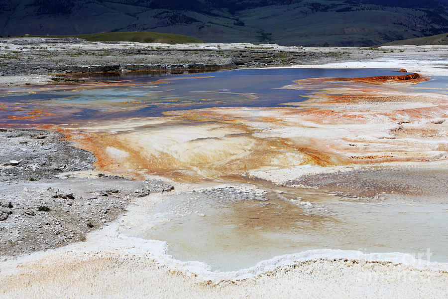 Thermal Photograph - Mammoth Hot Springs Upper Terraces In Yellowstone National Park by Louise Heusinkveld