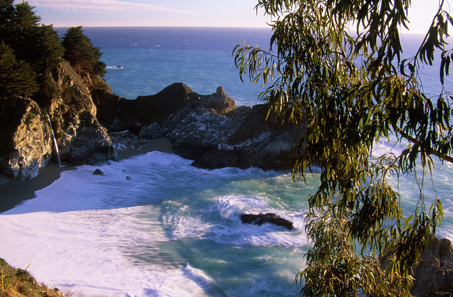 Mcway Falls Photograph - Mcway Falls by Soli Deo Gloria Wilderness And Wildlife Photography