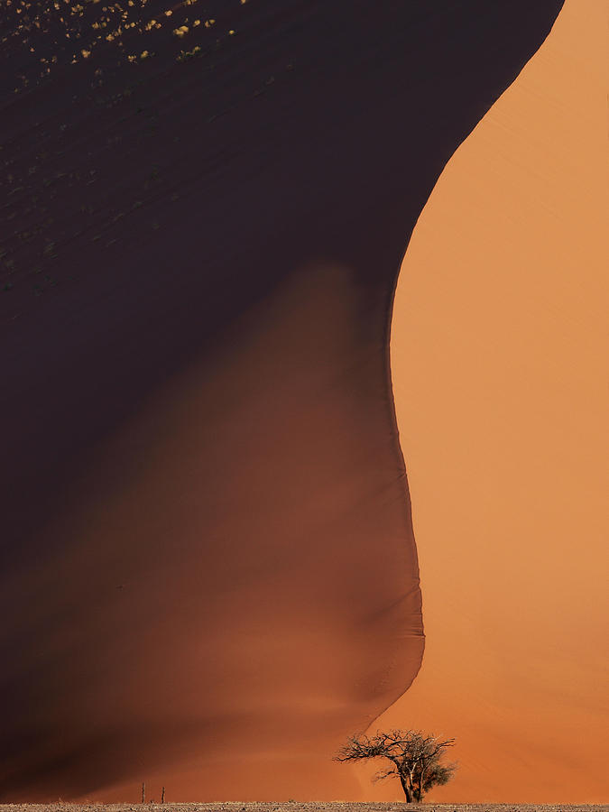 Namibia Photograph - Namibia Dune by Nina Papiorek