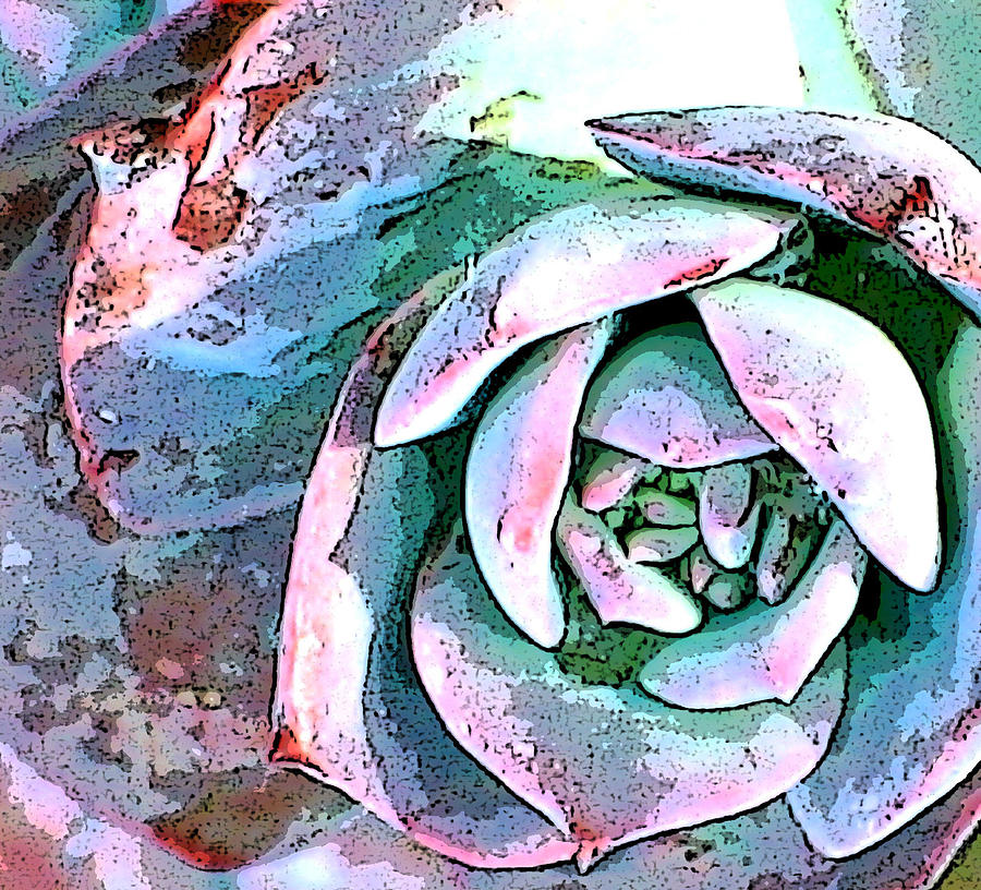 Floral Photograph - Nature Series by Ginger Geftakys
