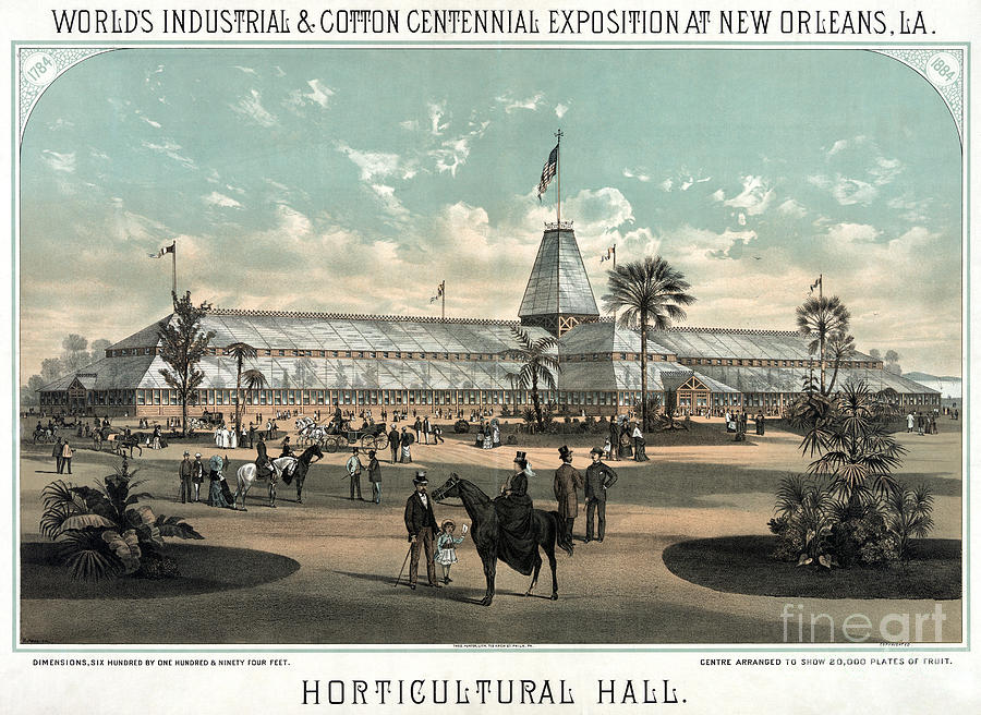 1884 Drawing - New Orleans, Fair, 1884.  by Granger