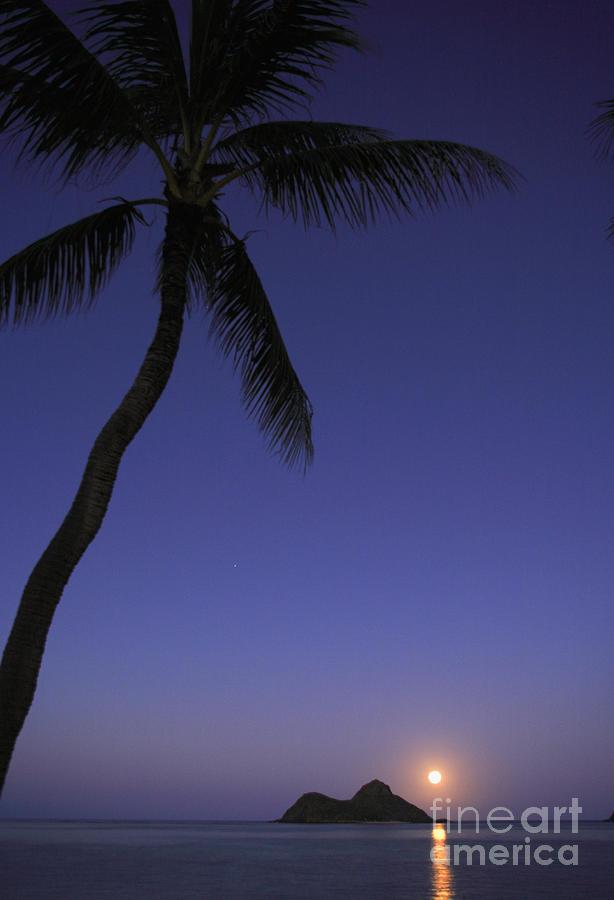Beach Photograph - Oahu, Lanikai Beach by Tomas del Amo - Printscapes