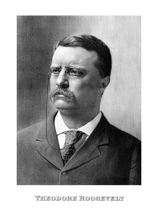 Teddy Roosevelt Mixed Media - President Theodore Roosevelt by War Is Hell Store