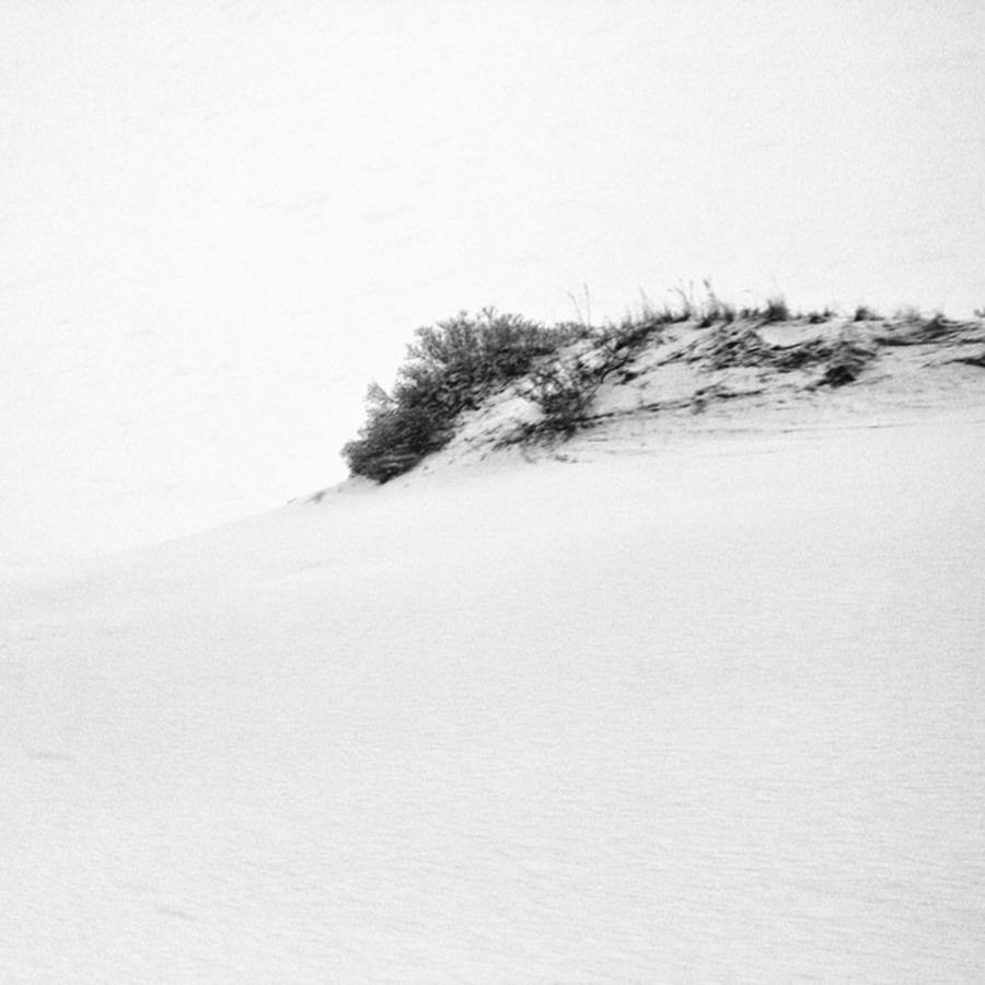 Provincetown Photograph - #provincetown by Ben Berry
